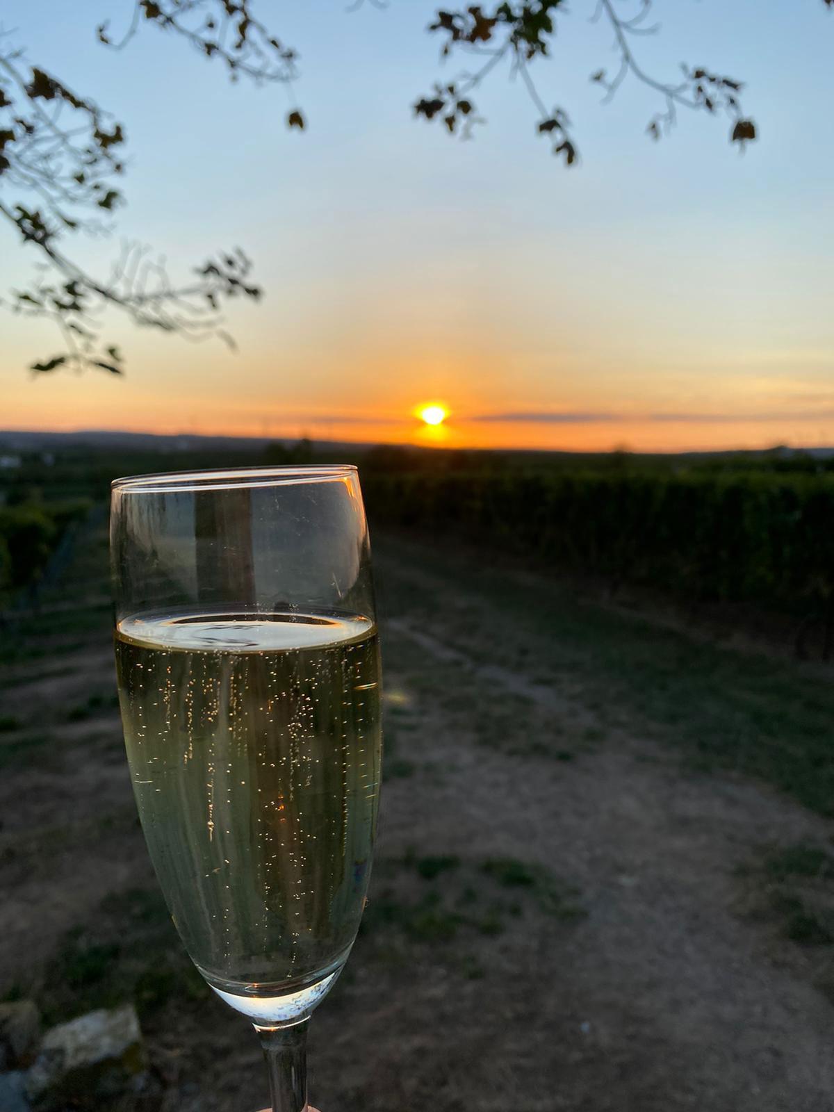 Sektglas und Sonnenuntergang
