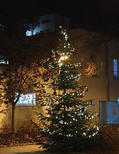 Tannenbaum erleuchtet bei Nacht